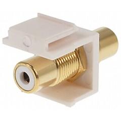 Cuplă modulară RCA Keystone FX-C1 (alb)